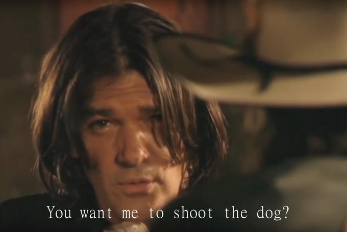 shoot_the_dog_large.jpg